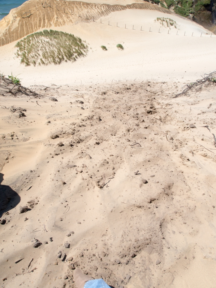 Evidence of my climb up a 200ft. Sand dune